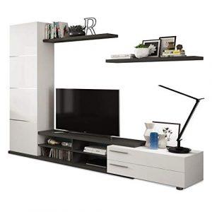 Habitdesign 016669G - Mueble de Salon, Comedor, Acabado en Gris Ceniza y Blanco Brillo, Medidas: 240 x 180 x 42 cm de Fondo 2