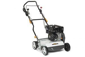 Alpina 211400242/16SC 40g Gasolina Escarificador, 4000W 1