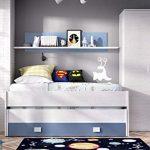 HABITMOBEL Pack Dormitorio Juvenil, Cama Nido 2 cajones + Armario de 2 Puertas 90 cm,COLCHONES Y SOMIER INCLUIDOS 18