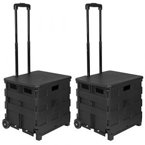 WOLTU 2x Carritos de Compra Carrito de transporte con Tapa Plegable Capacidad de 35 kg 64L 42X40,5X100 cm ABS/Acero Inoxidable Negro EW4802sz-2 2